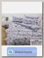 Комплект постельного белья ЕВРО Aimee 030-321