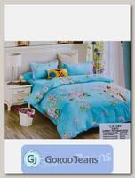 Комплект постельного белья ЕВРО Aimee 030-254