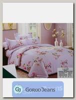 Комплект постельного белья ЕВРО Aimee 030-337