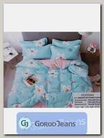 Комплект постельного белья 2-х спальный Aimee КПБП-020-428