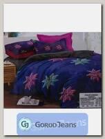 Комплект постельного белья ЕВРО Aimee 030-304