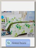 Комплект постельного белья ЕВРО Aimee 030-338