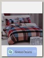 Комплект постельного белья 2-х спальный Nina КПБС-020-263