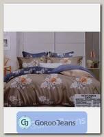 Комплект постельного белья ЕВРО Aimee 030-299